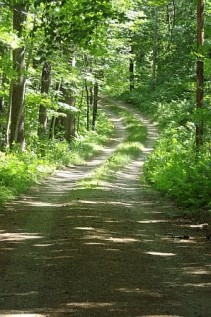 Agwu road.jpg